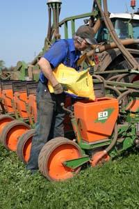 Att så majs i slutet av juni efter raps innebär att man hinner med två högavkastande grovfoderskördar på samma fält.