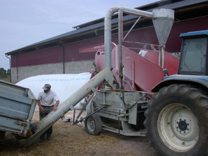 Här ensileras krossad spannmål. Det är ett enkelt jobb för maskinen. Det räcker att hålla emot med hjulbromsarna och det är spannmålskrossens kapacitet på 30 ton i timmen som begränsar hela arbetet.