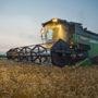 Spannmålspriset bör stiga i Sverige nu